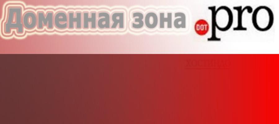 Доменная зона .PRO — домен для специалистов