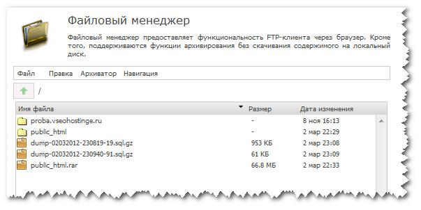 Внешний вид файлового менеджера TimeWeb